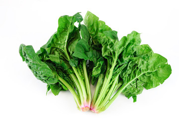 fresh green spinach on white background