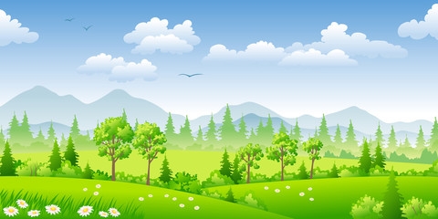 Panorama summer landscape with trees