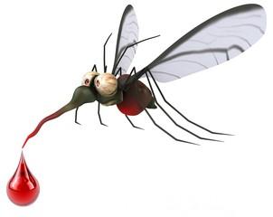 Mosquito da dengue