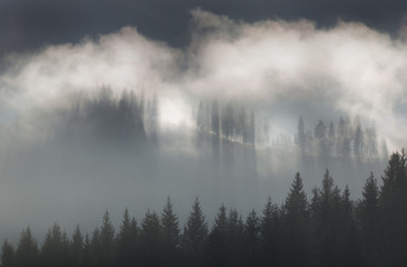 Carpathian Mountains. Foggy morning in the mountains.