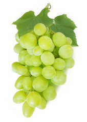Grapes branches isolated on white background