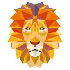 Lion head in polygonal pattern