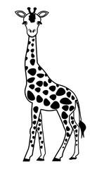 Giraffe outline vector