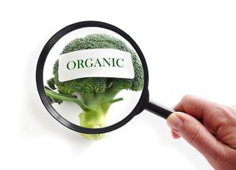 Organic food inspection