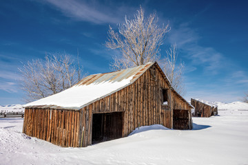 Farmers barn covered with snow