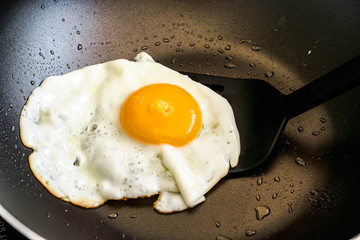 Aluminium Prints Egg fried egg