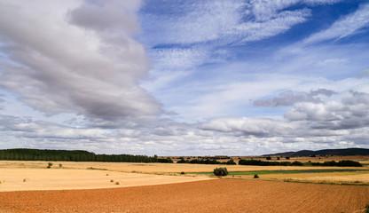 Paisaje campos de cultivo, pinar y Sierra de Casas Viejas, León.