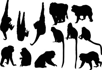 twelve black monkey silhouettes