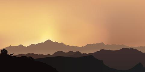 Paysage de montagne - Mont Blanc - Alpes