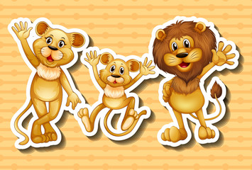 Lion family on orange background