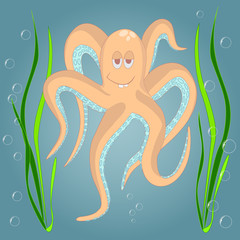 Very Funny octopus
