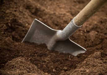Fototapeta Shovel in the ground