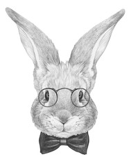 Portrait of Rabbit with glasses and bow tie. Hand drawn illustration.