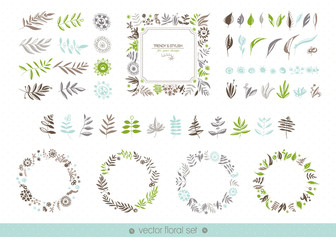 Floral hand drawn collection. Flowers, leaves, frames, decorative elements for your design. Vector set