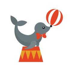 circus seal animal