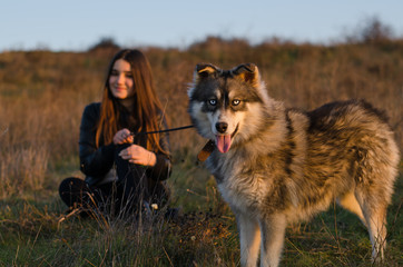 Girl is spending some nice time with her husky dog on the field