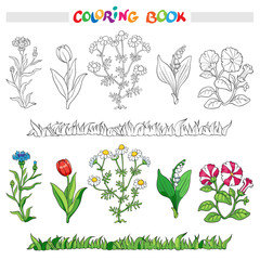 Coloring book or page with flower cornflower, daisy, tulip, lily of the valley, and petunia.. Vector illustration.