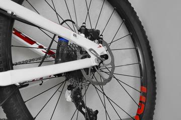 of the bike rear wheel