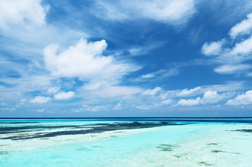 Tropical seascape in Maldives Wall mural