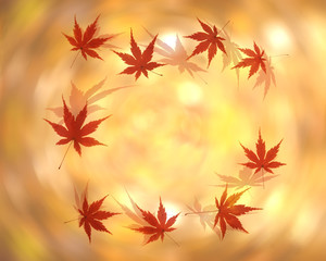 紅葉のイメージ