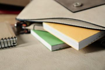 Fashion female handbag with books, close up