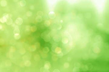 Green blurred background and sunlight