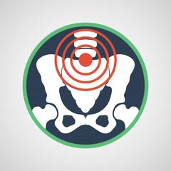 pelvic pain vector