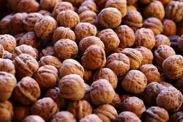 Many walnuts in brown shells