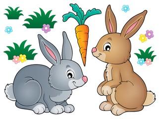 Rabbit topic image 1