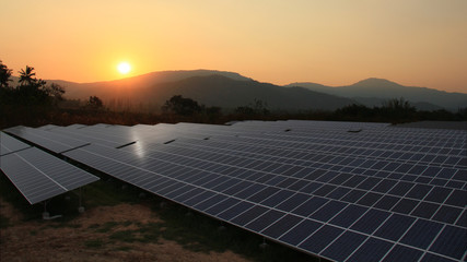 Solar farm with sunrise