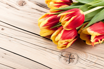 Fresh colorful tulips on wooden background