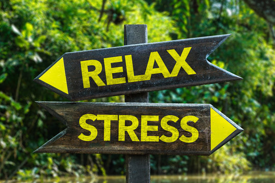 Relax - Stress signpost with forest background
