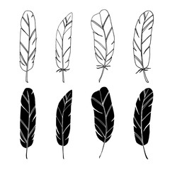 Set of hand drawn feathers, isolated black white vector objects