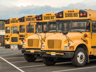 Photograph of four yellow school buses parked side by side in a parking lot.