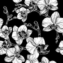 black and white seamless pattern with hand drawing orchid flower