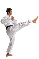 Judo fighter from different countries