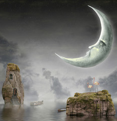 Illustration shows  moon in sky