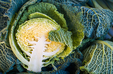 Savoy cabbages, green vegetables close up