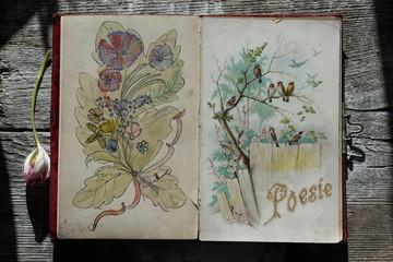 Poesiealbum, altes Poesiealbum aufgeschlagen