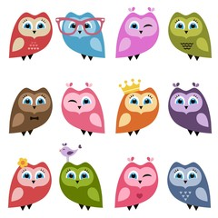 Cute owls and owlets set