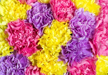 textured abstract background from a bouquet of flowers closeup