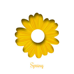 Spring background. Vector isolated flower illustration in cut paper style for banner, card, or poster design.