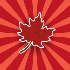 Red maple leaf sticker on a bright background