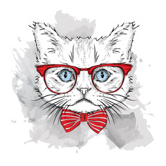 Canvas Prints Hand drawn Sketch of animals Picture of portrait of a cat with the glasses. Vector illustration.
