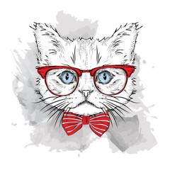 Foto op Canvas Hand getrokken schets van dieren Picture of portrait of a cat with the glasses. Vector illustration.
