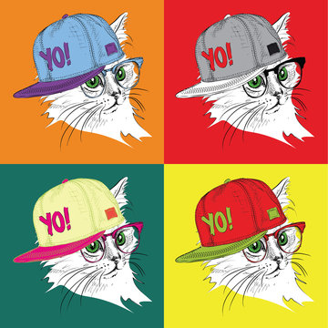 Portrait of cat in the glasses and in hip-hop hat. Pop art style vector illustration.