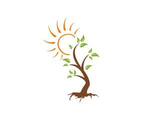 Tree sun logo