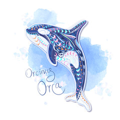 Patterned orcinus orca