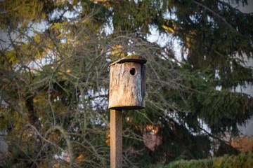 Vogelhaus aus Holz im Garten