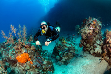 Sidemount diving on a Coral Reef